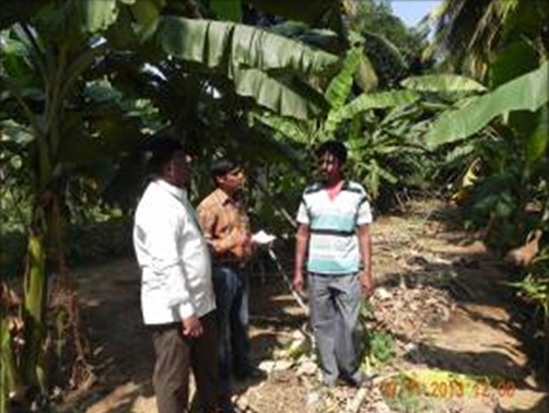 Diagnostic Banana plot visit at Sira gate