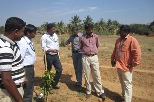 Demonstration of Dry land Horticulture crop - Jamoon